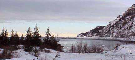 Beluga point in winter